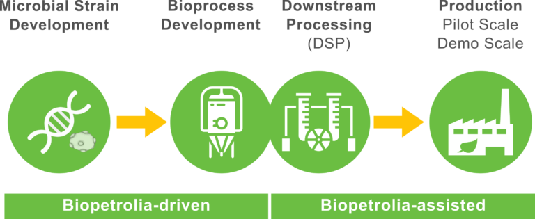 Microbial strain development, strain improvement, Bioprocess Development, Downstream Processing, Demo Scale and Pilot Scale Production